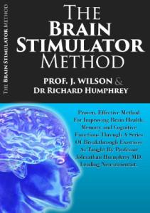 Brain Stimulator Method ebook